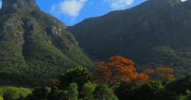 África do Sul – viagem